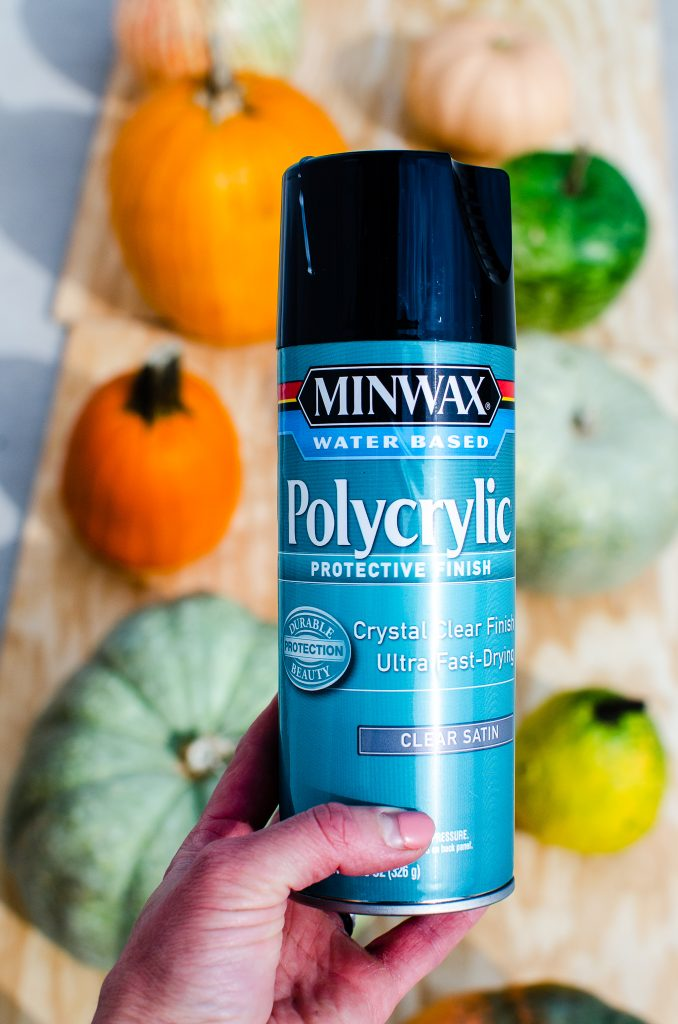 water based polycrylic to preserve pumpkins
