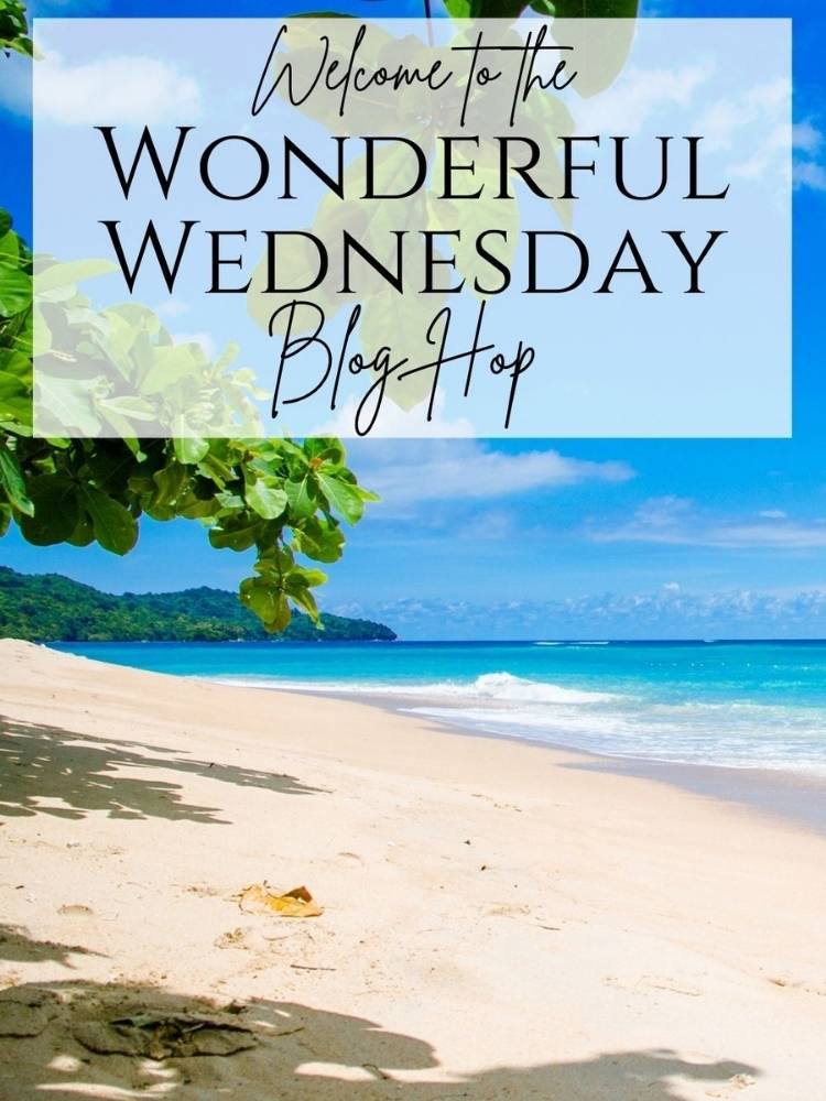 Feature photo for Wonderful Wednesday Blog hop